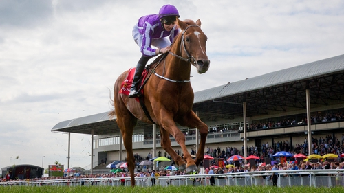 Australia eased home in June's Irish Derby at the Curragh