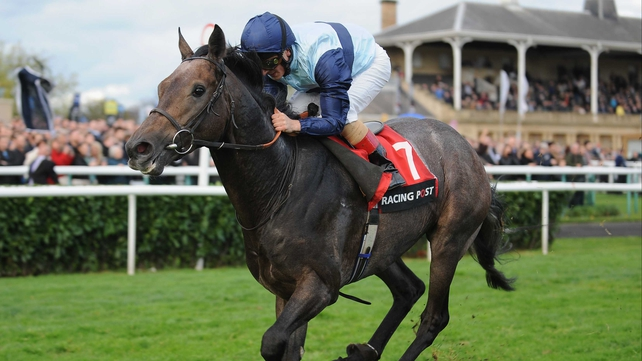 Kingston Hill finished fourth in a slowly-run renewal of the Eclipse on his most recent start