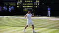 Djokovic defeats Dimitrov to reach Wimbledon final