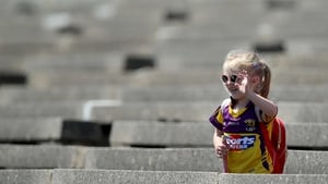 Elsewhere, a young camogie fan turned up to see Wexford take on Cork