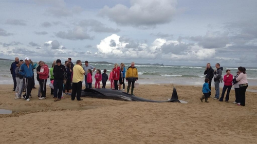 A crowd gathered on the beach in Co Donegal