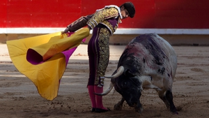 Spanish bullfighter Daniel Lugue performs against a bull from the Torrestrella ranch, during the Fiesta de San Fermin in Pamplona