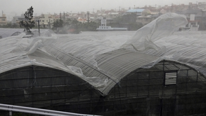 Plastic sheets fly out from mango greenhouses due to the strong winds generated by typhoon Neoguri in Tomigusuku