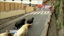 Two injured in Pamplona's bull running