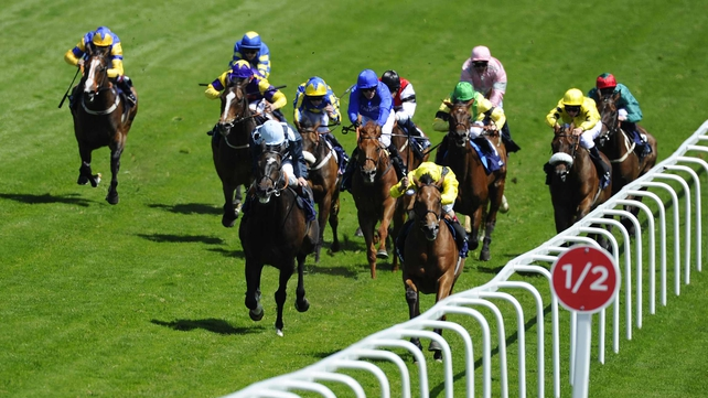 Roger Varian's Farraaj (l, yellow) will start widest of all after being drawn in stall 22