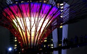 The supertrees incorporate environmental technologies such as solar power, rainwater collection and a conduit for air from the cooling systems