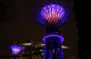 The 101-hectare park features a grove of supertree structures with real vegetation creeping up the lit sculptures