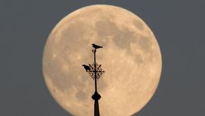 Berlin's full moon