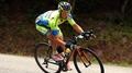 Roche reveals details of Contador crash
