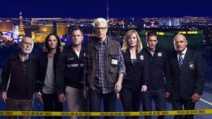 The cast of CSI