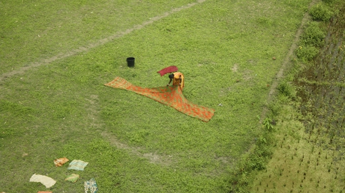 Images from Gaibandha: a woman drying a sari in a field