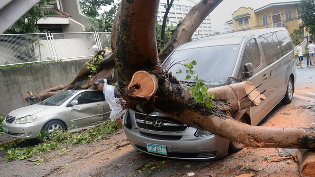 Cars are pinned downed by uprooted trees