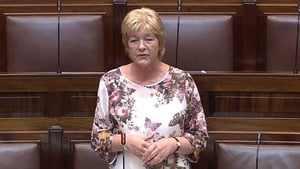 Labour TD Anne Ferris gave an emotional account of meeting her sister for the first time