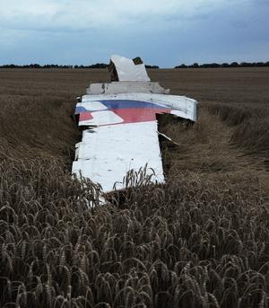 Debris of the Boeing 777 is seen in a field near Donetsk, Ukraine