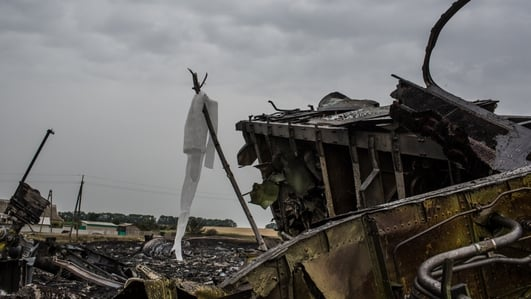 The international fallout from MH17