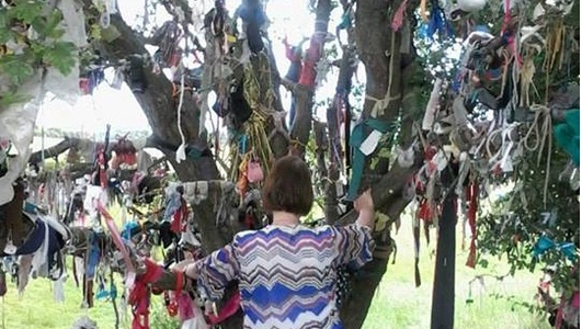 Faery Tree Cleanup