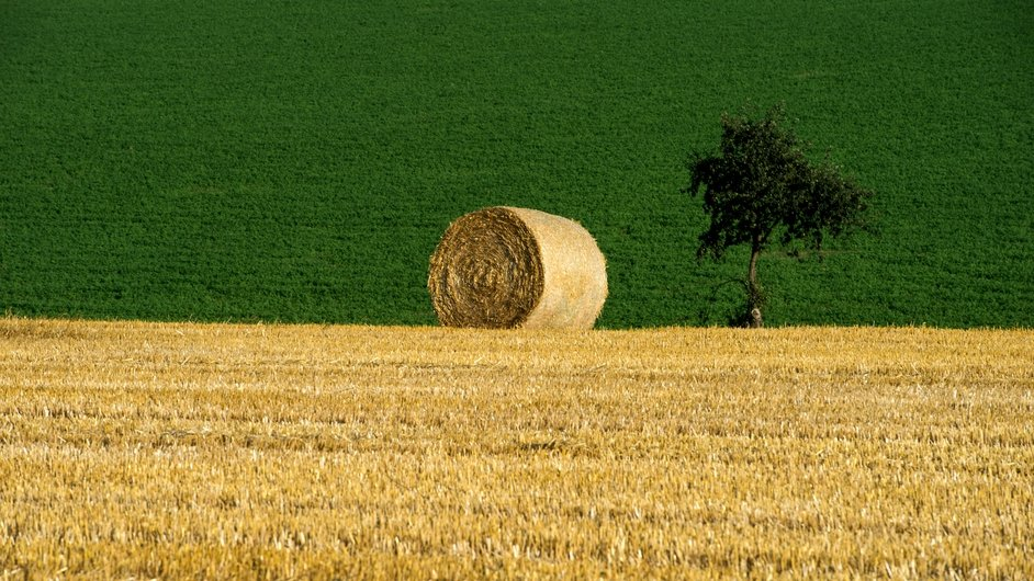 A bale of straw lies in a field during harvest time near the village of Oucmanice, Czech Republic