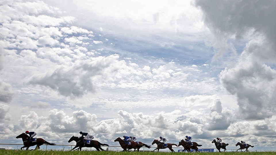 A general view of the field in the first race of the day at the Curragh on Saturday