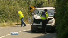 Gardaí in Co Laois appeal for information after two die in crash