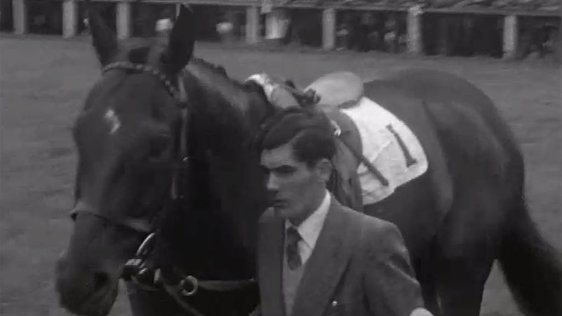 P J Gilmore Collection : Galway Races 1954