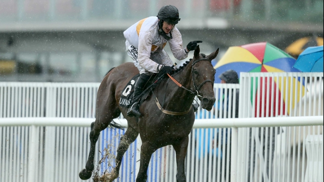 Dessie Hughes' Golden Wonder prevailed in testing conditions at last year's Galway Festival