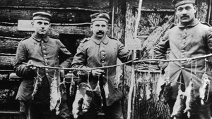 Three German soldiers display rats killed in their trench the previous night