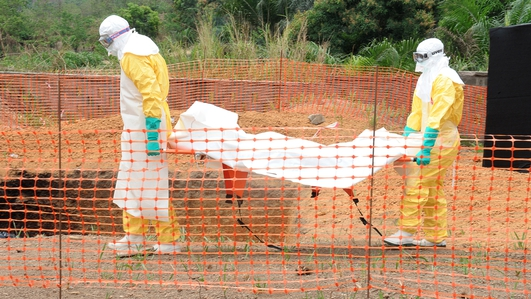 Could Ireland deal with outbreak of Ebola virus?