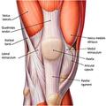 My Left Knee