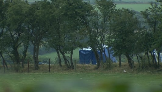 Man's body found in Co Meath