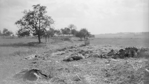 Corpses lying on the battlefield after fighting in north-eastern France