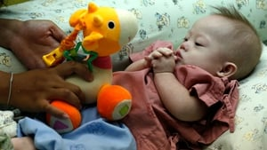 Allegations that an Australian couple had abandoned their Down Syndrome baby with his Thai birth mother sparked controversy last year