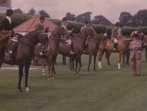 Dublin Horse Show (1954)