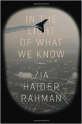 "Book review: ""In The Light Of What We Know"" by Zia Haider Rahman"