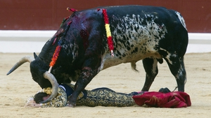 Bullfighter Jose Miguel Perez 'Joselillo' was turned over by a bull in Vitoria in Spain