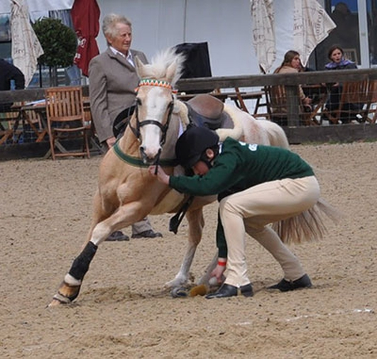 Tinahely Show - Pony Club Games