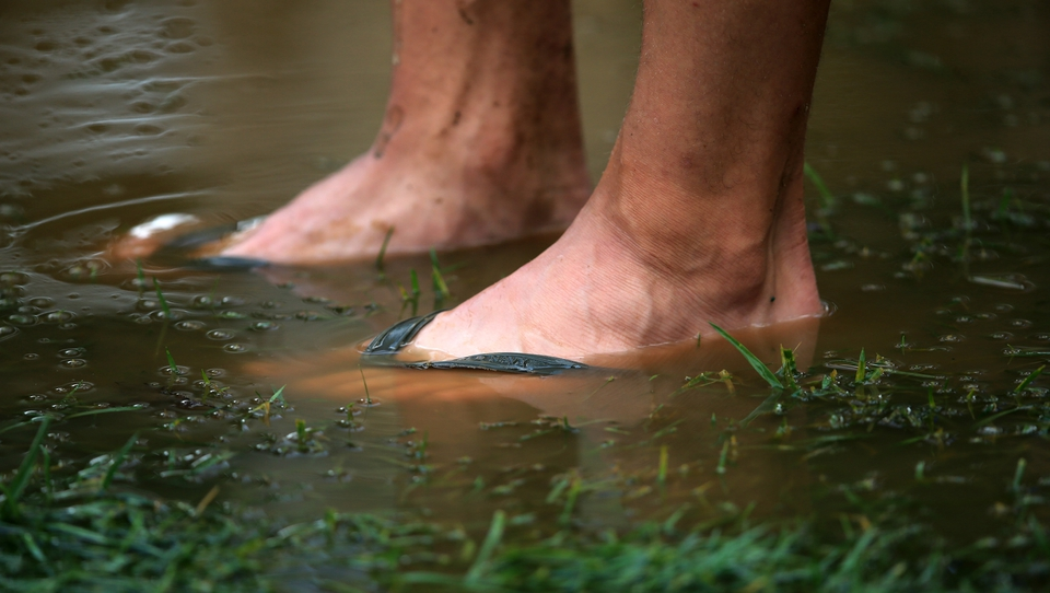 The sodden conditions caused problems for spectators as well