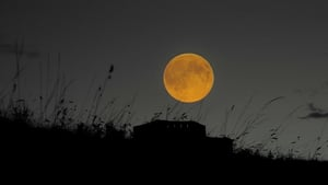 The Supermoon in Dublin's Phoenix Park (Pic: Anthony Lynch)