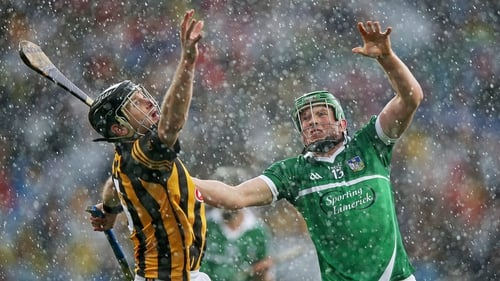 Limerick fell just short against Kilkenny