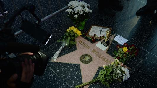 Suicide / Robin Williams