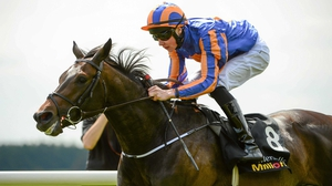 Aidan O'Brien said his son, Joseph, was likely to ride Magician in the Breeders' Cup