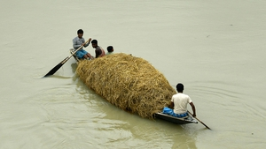 Villagers carrying straw in a boat for their cattle in the flood-affected Morigaon district of Assam state, India