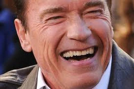 Arnold Schwarzenegger - An Appreciation