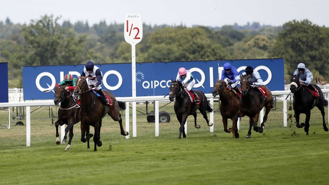 Pallasator was a convincing winner of an Ascot handicap on his most recent outing