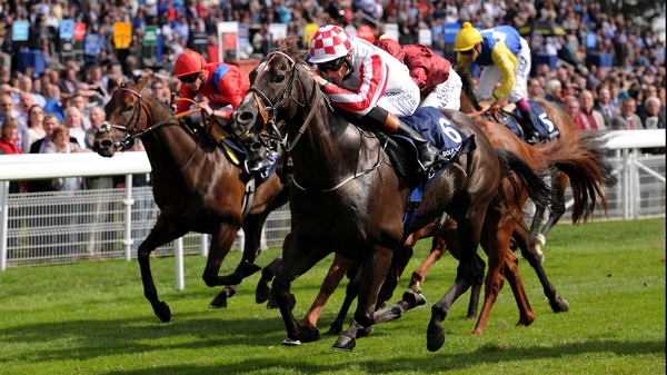Sole Power is a top-price 3-1 for the Sprint Cup