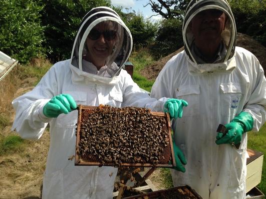 Bee Keeping - Philip McCabe