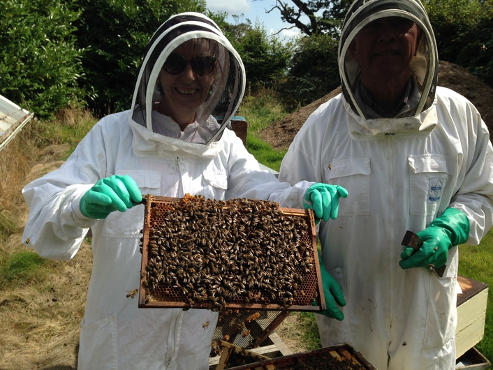 Bee Keeping - Philip McCabe