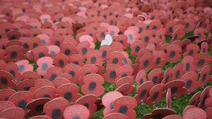Mons Commemorates World War I Battles Centenary