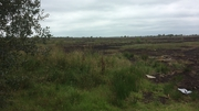 Search was being carried out at Oristown bog by the CLVR