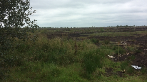 The Independent Commission for the Location of Victims' Remains has carried out searches in the area before