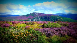 John Ryan sent in this striking photo from the Wicklow Mountains
